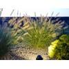 Lauko šviestuvas Garden Spots 7068/B/W